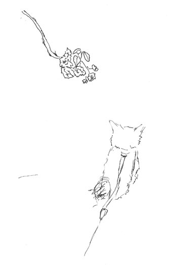 branch_dog_s